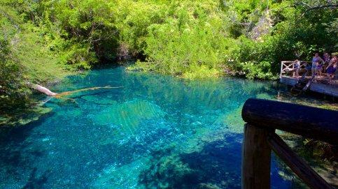 116832-Indigenous-Eyes-Ecological-Park